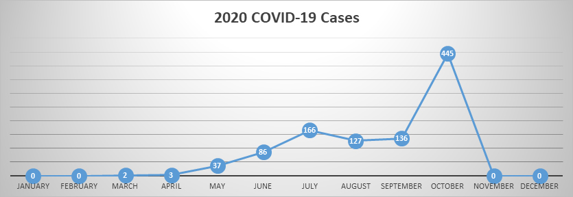 2020 COVID-19 cases graph - year-to-date